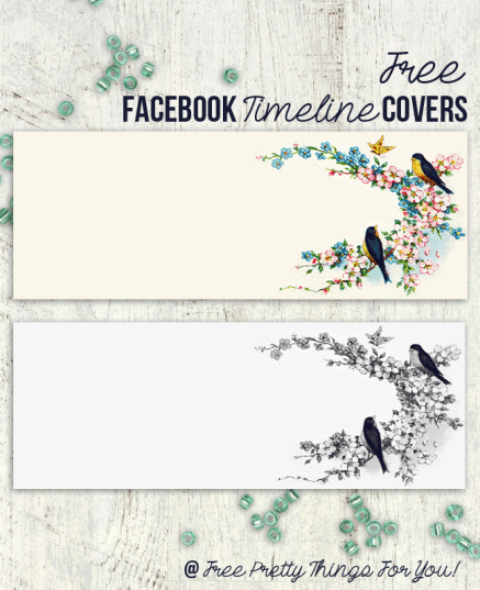 Free-Facebook-Timeline-Cover-bluebirds-by-FPTFY-1.png