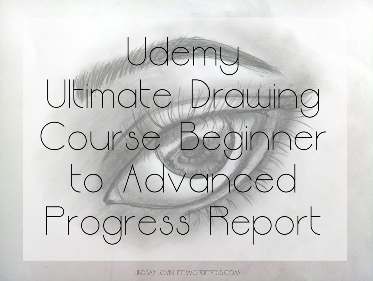 Lindsay's Life Update: Udemy Ultimate Drawing Course Beginner to Advanced Progress Report