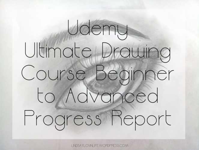 Udemy Ultimate Drawing Course 4