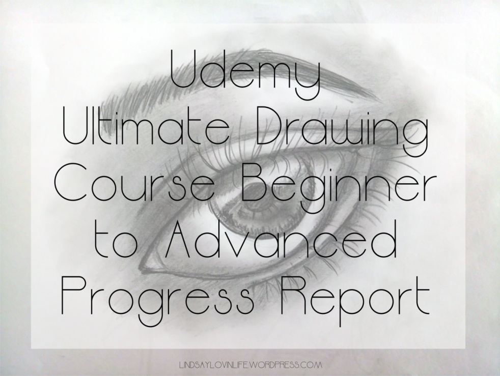 Udemy Ultimate Drawing Course Beginner to Advanced Progress