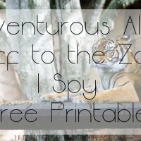 Adventurous Alex: Off to the Zoo I Spy Free Printable